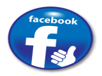 bring 1,000 real fans to your Facebook fanpage every month